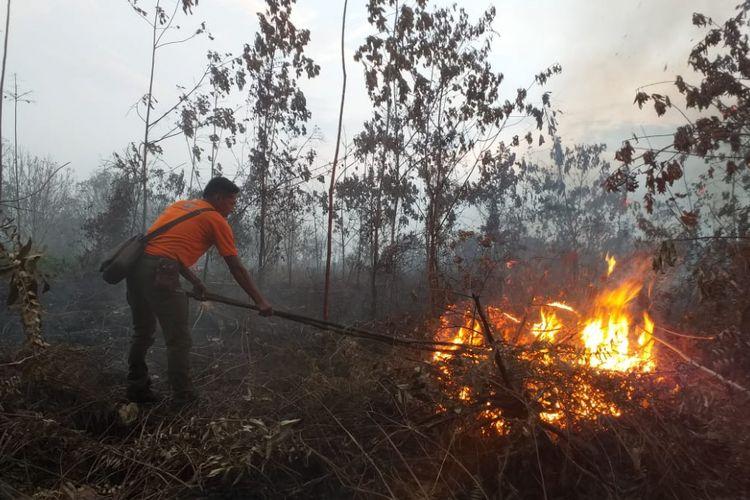 Cuaca kering dan berangin, BPBD Sukoharjo waspadai kebakaran kawasan hutan