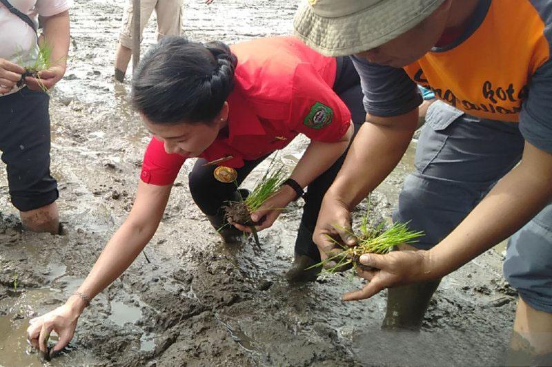 Wali kota Singkawang ajak kelompok tani maksimalkan lahan kosong